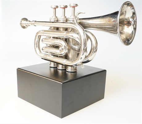 Piccolotrumpet  OneOff
